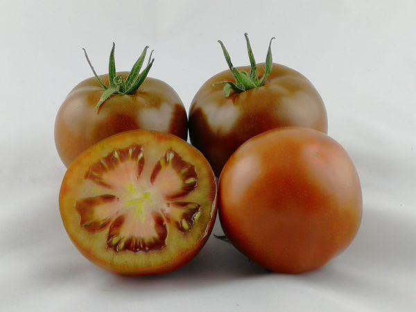 Sacher F1 pomidor