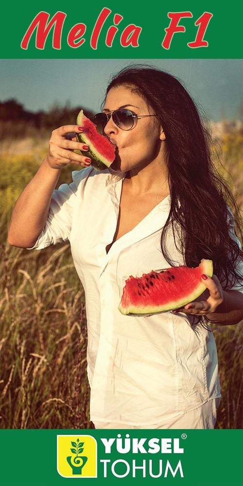 Lato,  wakacje  i relaks… Tak, tak, to już niedługo! Dużo , przyroda w rozkwi…