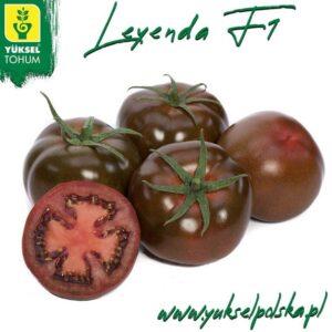 Leyenda F1 Pomidor Czekoladowy