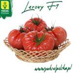 Pomidor Malinowy Wczesny I Odporny Bez Glaba (1)